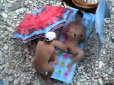 candid hidden cams of real working girls
